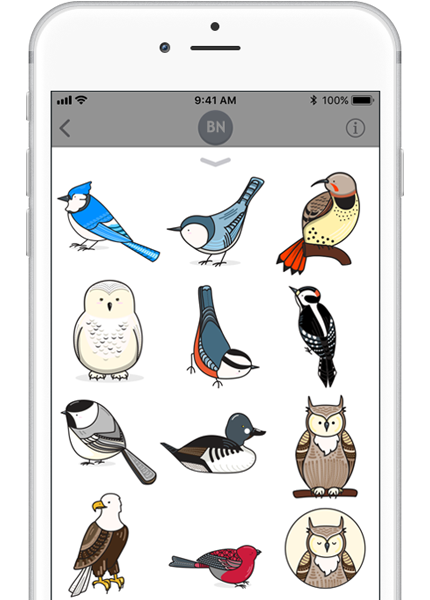 BirdNerds sticker pack